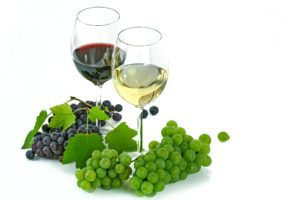 Grape vine, fruit and wine
